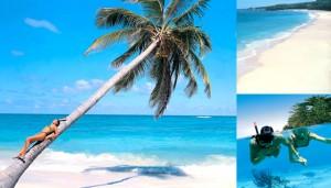 republica dominicana 300x171 República Dominicana, 2X1 de Viajes Falabella y sus ofertas